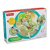 Mattel BCD28 - Fisher-Price 2-in-1 Kompakt-Schaukelsitz, apfelgrn